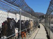 Pakistan starts building fence along Afghanistan border