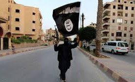 Syria civil war: Last major IS town Albu Kamal 'captured'